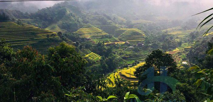 Ruộng bậc thang, khí hậu trong lành, rừng cây xanh mướt ở Bản Phùng đang chờ đón các dân phượt