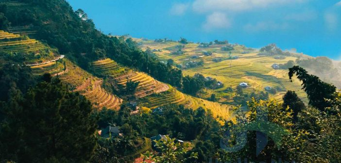 Bản Phùng với những cánh đồng ruộng bậc thang tuyệt đẹp