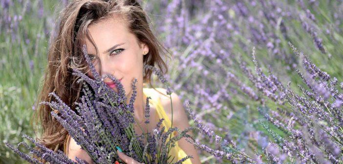 Tinh dầu hoa oải hương có tác dụng trị mụn trứng cá và mụn ẩn dưới da