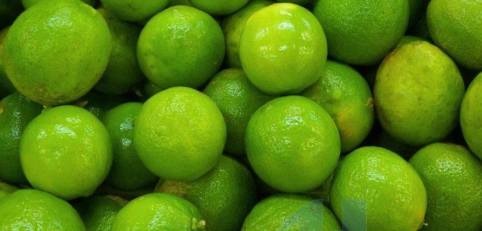 Chanh là loại quả dưỡng môi hiệu quả