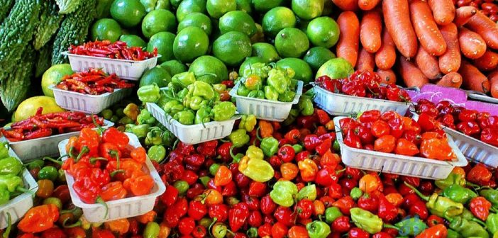 Fresh fruits high in calories include plantains, bananas, and guavas.