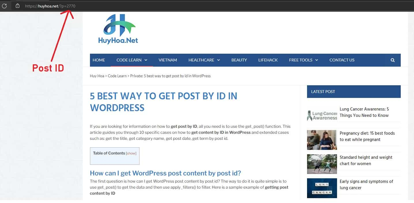 Post ID In URL of the Post Without Custom Permalink Structure