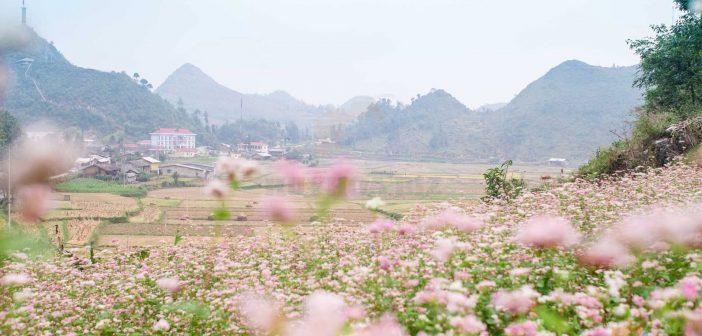 Ảnh thiên nhiên quê hương Việt nam