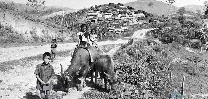 Hình ảnh đồng quê Việt Nam Xưa