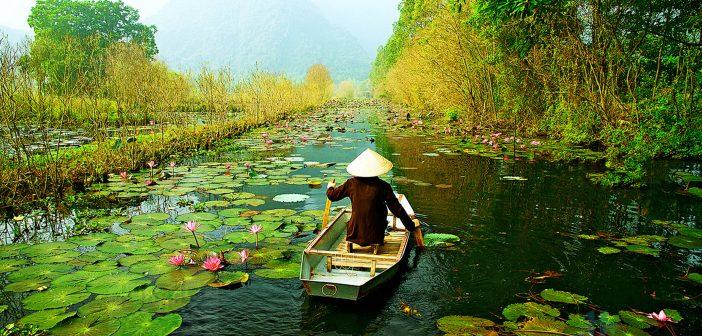 Hình ảnh làng quê Việt Nam đẹp xuất sắc