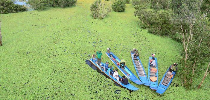 Vườn Quốc gia Tràm Chim thuộc huyện Tam Nông, tỉnh Đồng Tháp