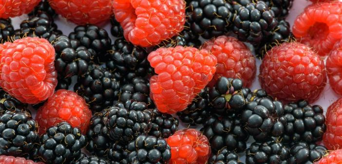 Berry fruit has recently been dubbed 'superfood' as a result of its high antioxidant capacity and claimed efficacy in combating a series of degenerative diseases.