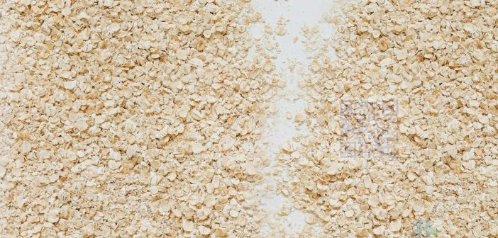 Oats help lower cholesterol and are high in fiber