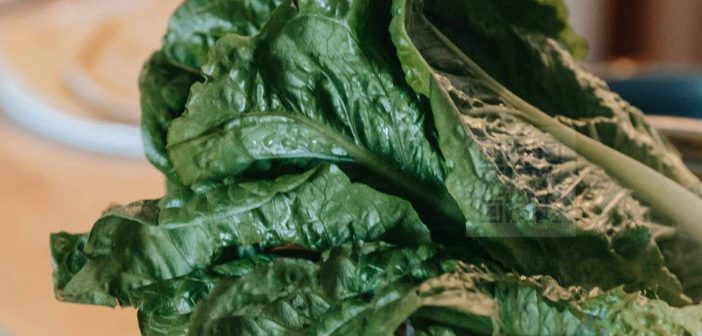 Spinach, whether eaten raw or cooked, is an excellent source of vitamins, minerals and beneficial phytochemicals