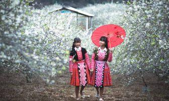 People of ethnic plantedflowers